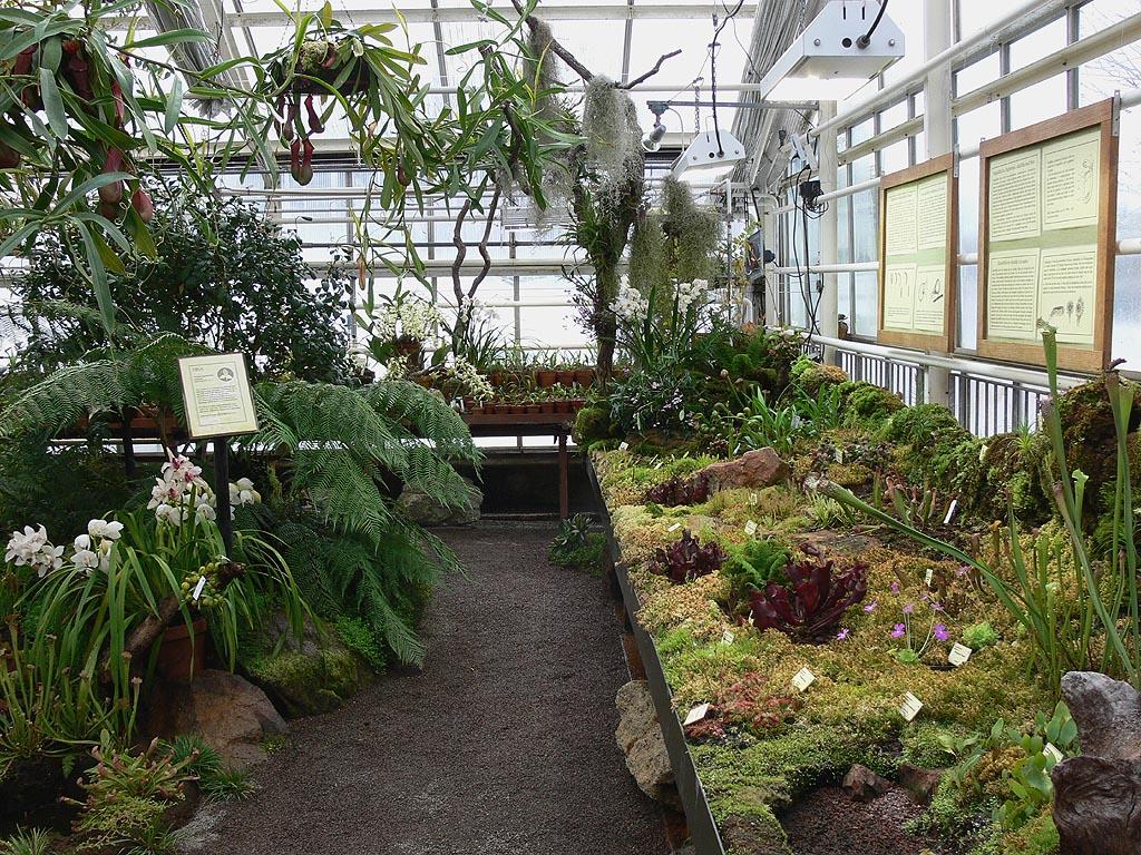 Carnet de voyage à göteborg   le jardin botanique